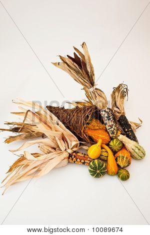 Corno da abundância com milho