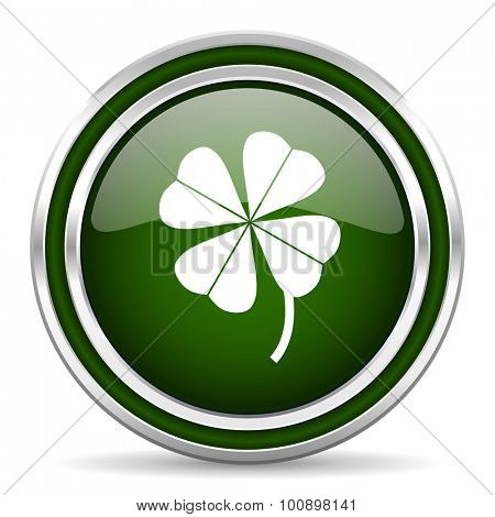 four-leaf clover green glossy web icon modern design with double metallic silver border on white background with shadow for web and mobile app round internet original button for business usage