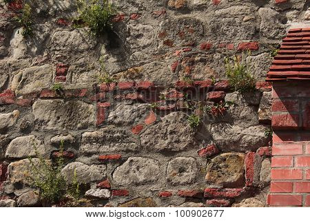 Brick and Rock Wall