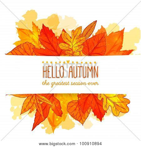 Hello autumn banner with orange and red hand drawn leaves. Vector fall background with leaf.