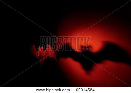 Halloween Bat With Terrible Shadow