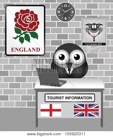 England Tourist Information