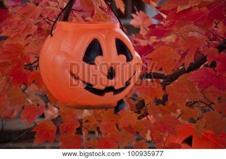 one jack-o-lantern basket in autumn tree