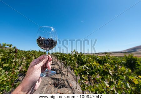 Wine Glass With Red Wine Grapes Held In A Hand