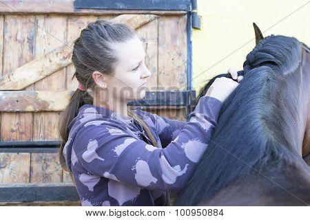 Girl Braiding A Horse Mane.