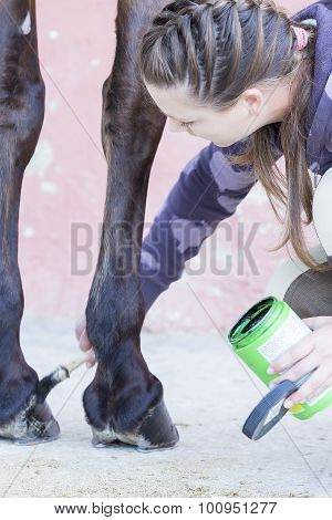 Girl Grooming Her Horse.