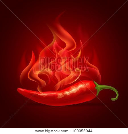 Red hot chili pepper in fire, fresh ingredient for tasty spicy food. Vector illustration.