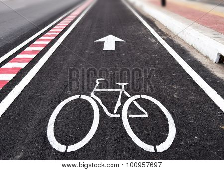 White arrow and bycicle sign on lanes road