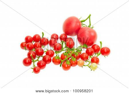 Several Branches Of Cherry Tomato And Two Conventional Tomatoes