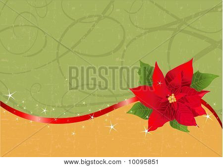 Red Poinsettia Christmas Background