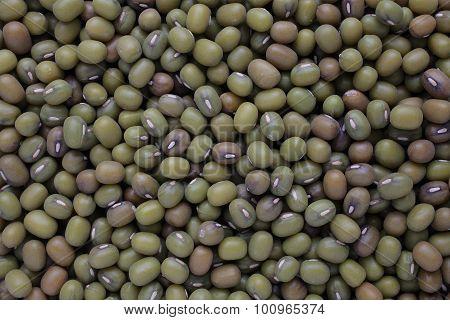 Mung Bean, Vigna Radiata, Also Jerusalem Bean, Mung Dal