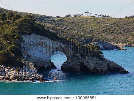 Le Architiello, The Coast Near Vieste, Gargano, Puglia, Italy