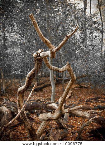 Forest Sculpture