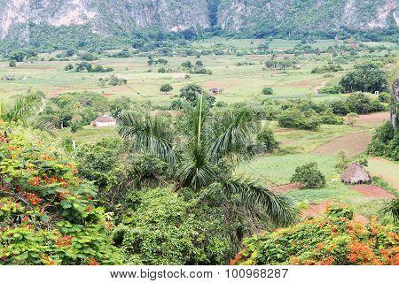 Valley Sierra del Rosario