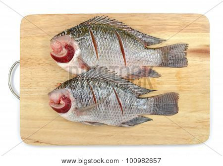 Nile Tilapia On Chopping Block