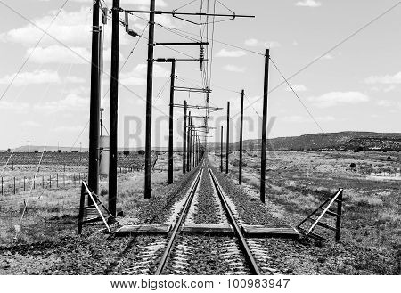 Railroad Tracks in Monochrome
