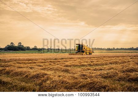 Harvester On A Field In The Summertime