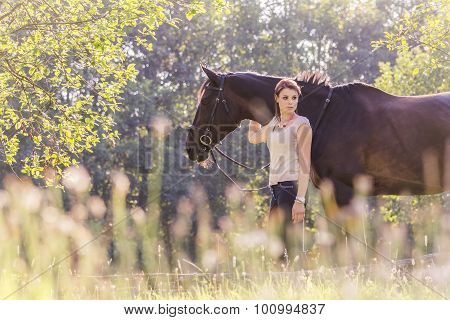 Beautiful Young Equestrian Woman With Horse In Summer Sun Nature