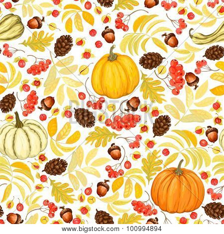 Autumn seamless background with pumpkins, acorns, pine cones, rowan and Oriental Bittersweet, vector illustration on white background.
