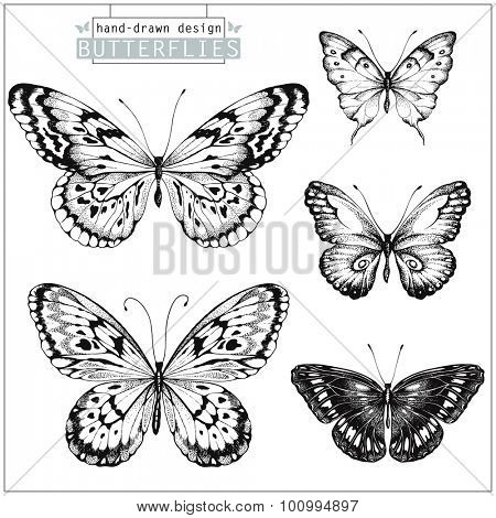 Collection of hand-drawn black silhouette butterflies, vector set 1.
