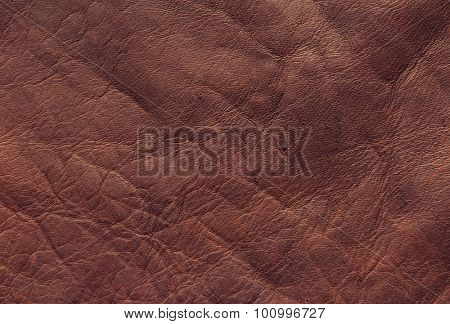 Processed brown raw hide with nice grain. leather texture.