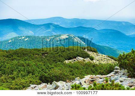 Ridge Of Blue Mountains
