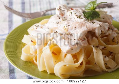 Fettuccine Pasta With Chicken And Cream Sauce Close-up. Horizontal