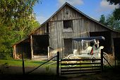 stock photo of yesteryear  - Farm scene with rustic barn and old horse buggy in the evening light - JPG