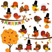 Vector Collection of Cute Thanksgiving and Autumn Birds poster