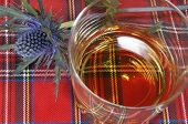 stock photo of scottish thistle  - A glass of single malt whiskey and a Scottish thistle on a tartan or plaid background - JPG