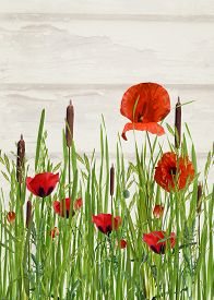 image of cattail  - Bright orange poppies and cattails in tall grass - JPG