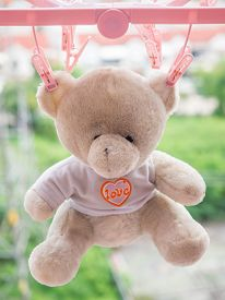 picture of love hurts  - Hanging teddy bear Light brown dried in the sun on blur background - JPG