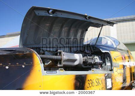 Northrop F5 E/F Gatling Gun