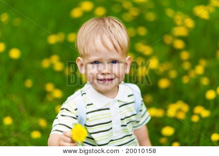 Smiling boy in dandelion meadow