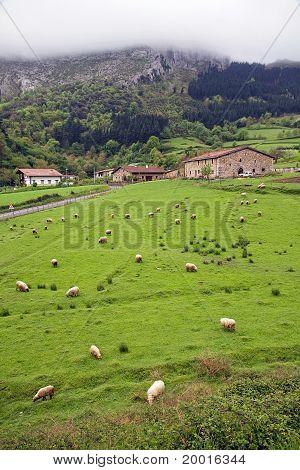 Basque mountain landscape
