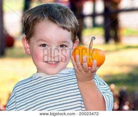 Young boy picks pumpkin at farm.