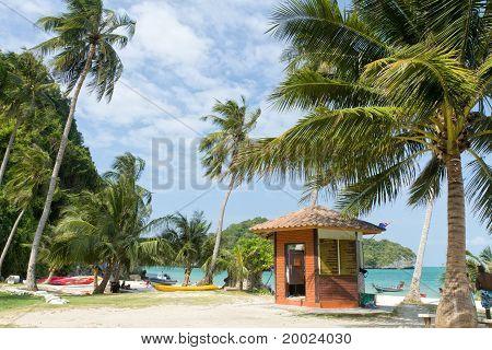 Tropical Island Scene