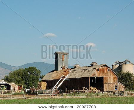 Farm in Niwot