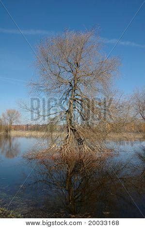 Inundaciones en río en primavera