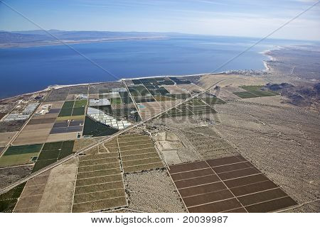Salton Sea Farmland