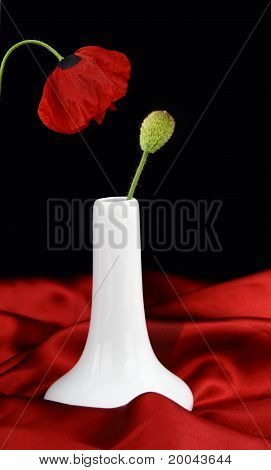 White Vase With Bud Poppy Flower