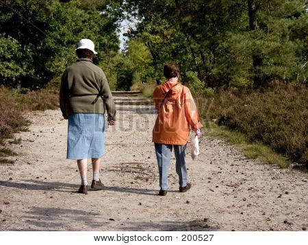 Seniors Walking In Forest.