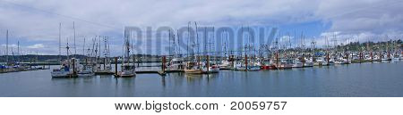 Fishing Boats At Anchor In Marina Yaquina Bay