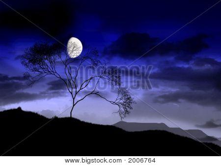 The Full Bright Moon.