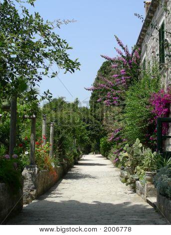 Trsteno Arboretum
