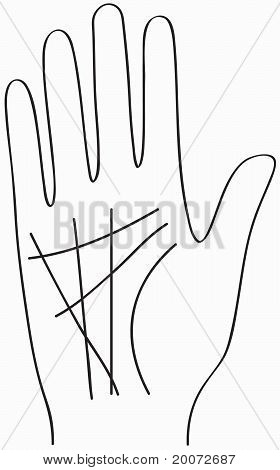 Hand, Chiromancy Lines, Black Contour Of A Palm