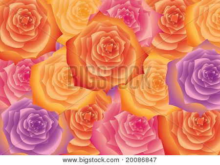 Background Of The Flowers.
