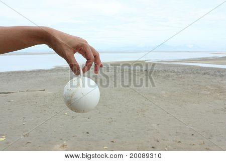 Man Hand Hold White Plastic Ball