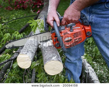 Chainsaw Cutting Branches
