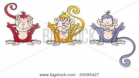 funny wise monkeys